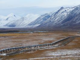 Oil pipeline in Alaska with mountain range