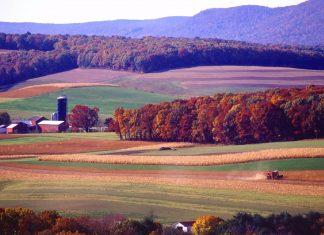 Pennsylvania Farm