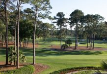 South Carolina Golf Course