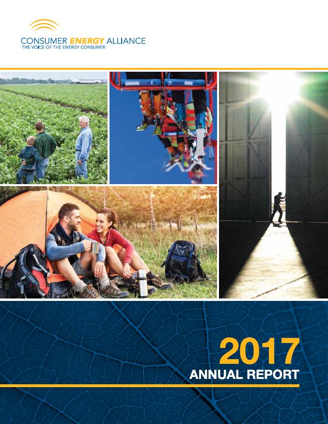 CEA 2017 Annual Report